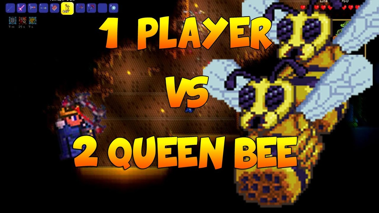 Как сделать пчелиную массу террария