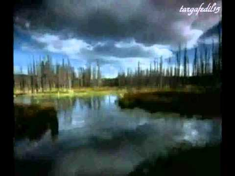Enigma - In The Shadow In The Light