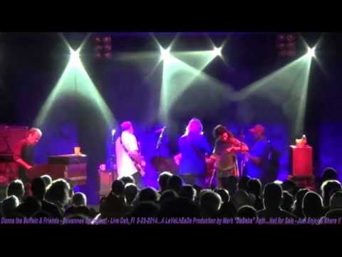 Donna the Buffalo & Friends - Suwannee Springfest - Live Oak, Fl  3- 23- 2014