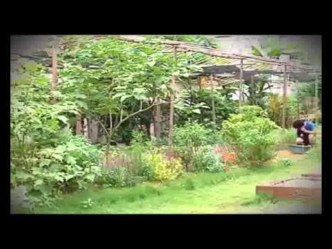 เกษตรพาลุย บ้านเจ้าชายผัก เบรก1