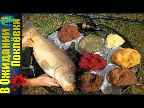 мамалыга для рыбалки на карася