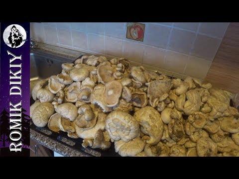 Способы приготовления белого степного гриба и как я рыбачил весной.