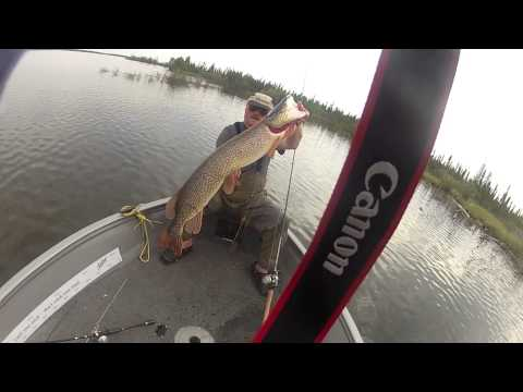 Canadian Pike Fishing Diary 2012 - new HD version