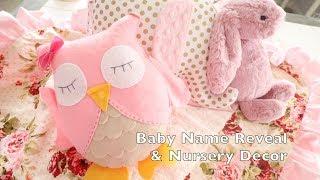 Baby NAME REVEAL &  Gorgeous Nursery Decor