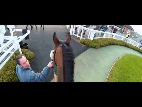 Horse Racing | All Through 2013 | Channel 4