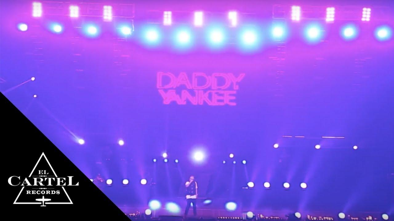 Rey papá Daddy Yankee Fan Art Diseño Ii Alx Dy (decidir si unirse a diferentes lugares deciden)