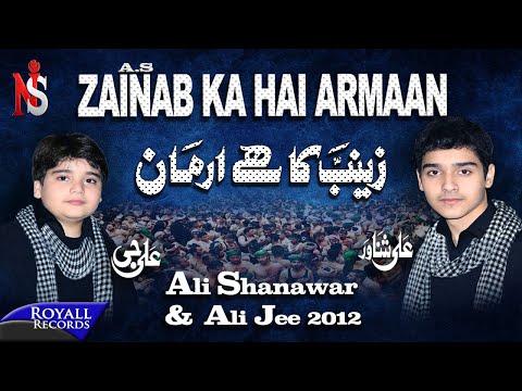 Ali Shanawar & Ali Jee | Zainab Ka Hai Armaan | 2012