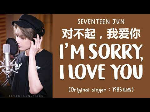 Download S/가사 SEVENTEEN 세븐틴 JUN - 对不起,我爱你 I'm Sorry, I Love You COVER Mp4 baru