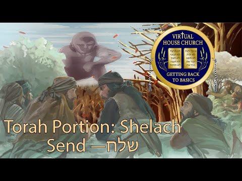 2021 Virtual House Church - Bible Study - Week 37: Shelach L'cha