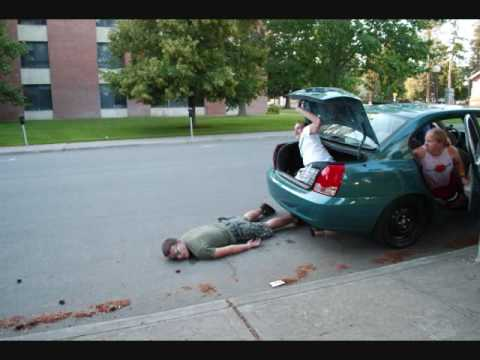 Trunk Monkey Car Crash