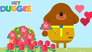 Hey Duggee Best Of Badges Hey Duggee Games Kids Cartoon Gameplay