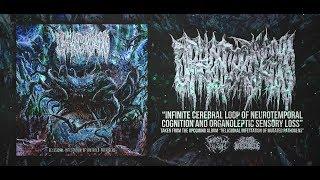 OPHIOCORDYCEPS - INFINITE CEREBRAL LOOP OF NEUROTEMPORAL COGNITION AND... [SINGLE] (2019) SW EXCL