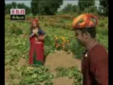 Marwadi Fagan 13 video