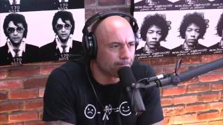 Joe Rogan talks AYAHUASCA & DMT