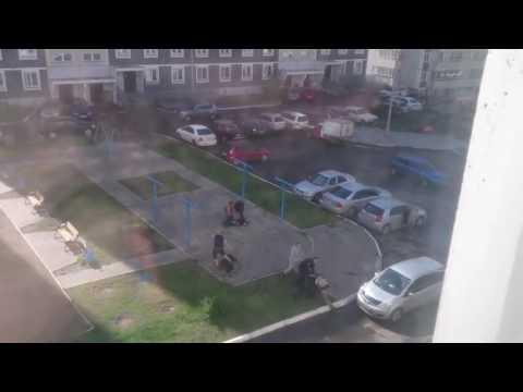 Мужики помогли полиции задержать алкашей (Красноярск 08.06.2016)