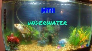 mth underwater 1
