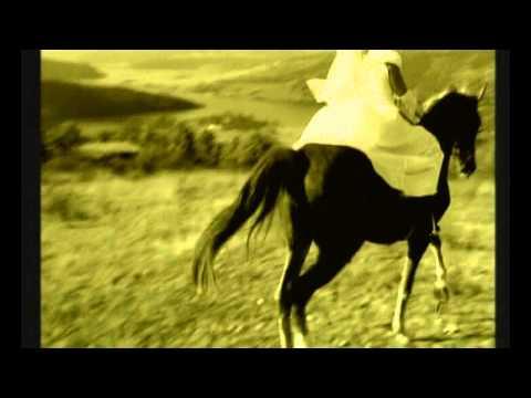 ИВАЙЛО ГЮРОВ-ВИНО И СЪЛЗИ - (IVAILO GIUROV-WINE AND TEARS)