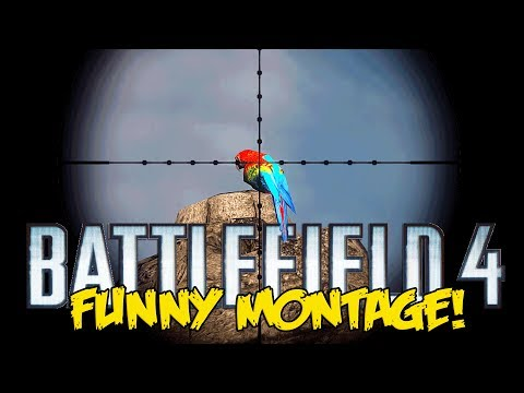 Battlefield 4 Naval Strike Funny Montage! - Kentucky Fried Recons, Parrot Snipe (BF4 funny moments)