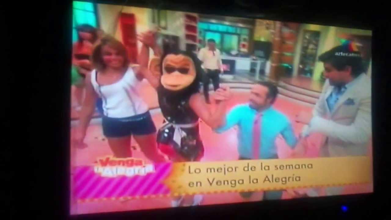 Raquel bigorra enseña Todo programa en vivo - YouTube