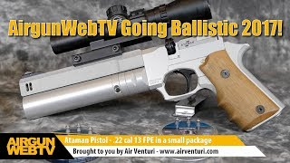 Going Ballistic 2017! Small Bore Lethality - H&N Pellets - Ataman AP16 Regulated Air Pistol