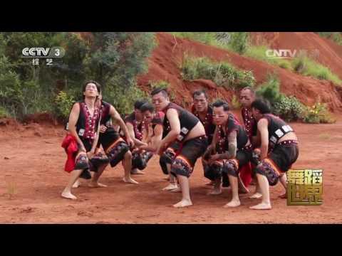 陸綜-舞蹈世界