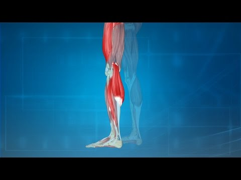 Leg Cramps: Treatment, Causes, Prevention