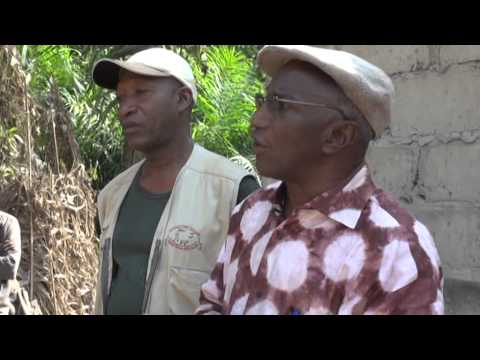 Guinea Project Film