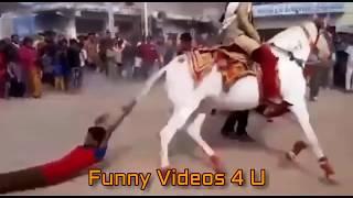 funny vedios | best funny clip of 2017 | whatsapp vedio | prank vedio |best funny clip of 2017