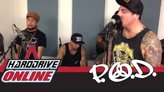 "P.O.D. - ""Beautiful"" (Live Acoustic Performance from hardDrive Studios)"