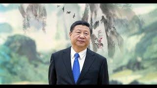 Dự ngôn bí ẩn con chim lông trắng báo hiệu vận mệnh Trung Quốc và Tập Cận Bình đang xôn xao dư luận