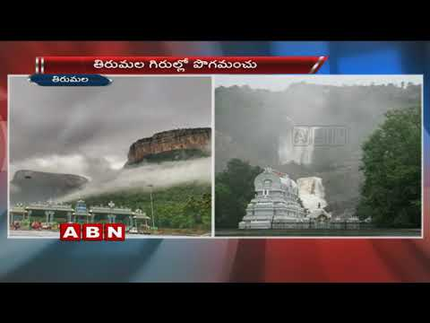 Very Pleasant Weather In Tirumala Tirupati | Monsoon season | ABN Telugu