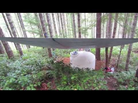 Wilderness Off Grid Cabin - How to Build: Rain Water Collection - Part 1