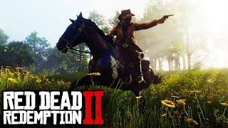 Red Dead Redemption 2 - NEW HORSES! HORSE CUSTOMIZATION, HORSE RIDING, HORSE BREEDS & MORE! (RDR2)