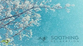Relaxing Piano Music: Relaxing Music, Spa Music, Yoga Music, Soothing Sleep Music ★119