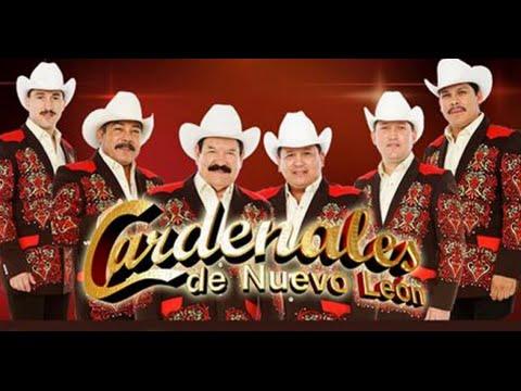 Cardenales De Nuevo Leon Mi Cómplice Cd. Juárez 2014