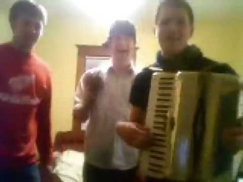 OBLADI OBLADA (Accordion Kalimba)