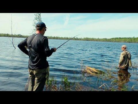 Рыбалка на Затерянном в Лесу Озере. Не Ожидали СТОЛЬКО наловить! А Дед просто нас спас!
