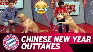 "Müller, Lewandowski and Kimmich attempt to ""tame"" dog! 😂🐶 