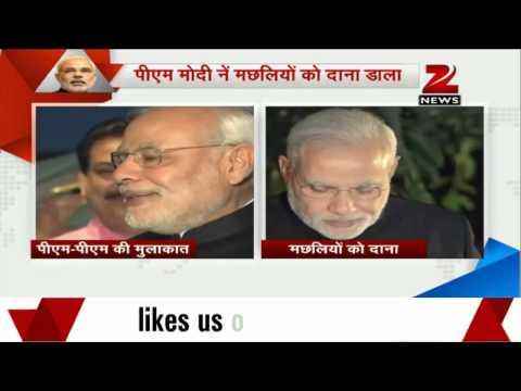 PM Modi's Japan visit: PM Modi performs 'Feeding the Fish' ritual