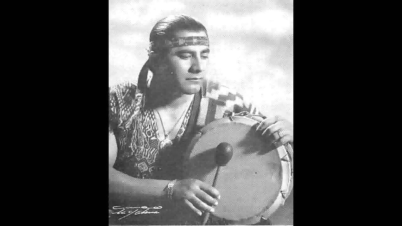 el indio araucano: