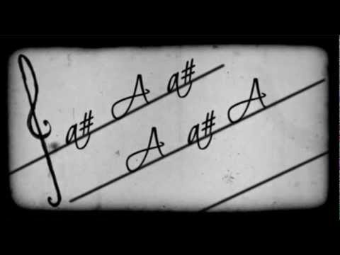 David Guetta - The Alphabeat - Kinetic Typography