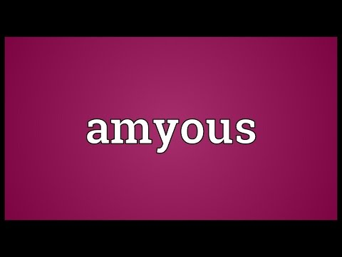 Header of Amyous