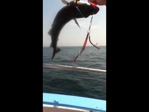 Deep sea fishing in new hampshire