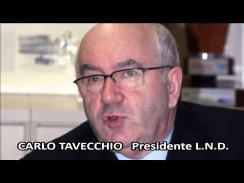 INTERVISTA CARLO TAVECCHIO