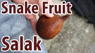 Exotic Fruit: Salak - Snake Fruit!