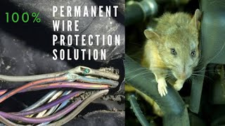 Car Wiring Protection From Rats/Mise/Mouse.