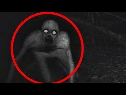 5 Strongest Signs Of Alien Life