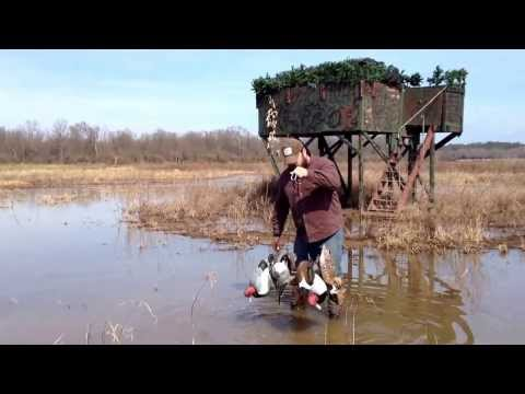 Swamp Rig demonstration for duck hunting and decoy handling