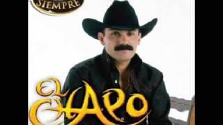 Vídeo 67 de El Chapo De Sinaloa