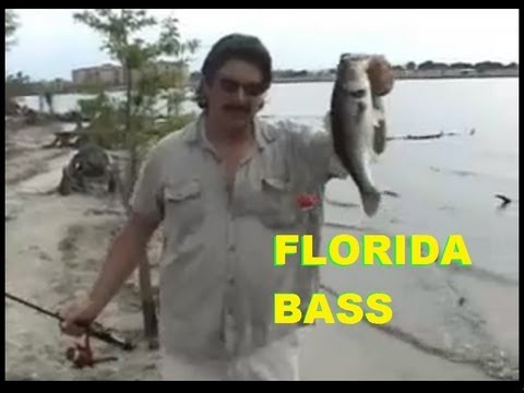 BASS FISHING / KISSIMMEE FLORIDA